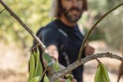 Corgas Bravas - Nature
