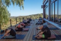 Fitness Studio - Yoga
